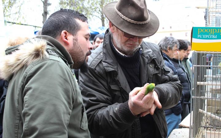 """Cours """"Reporter dans la ville"""" du 21/02/16"""